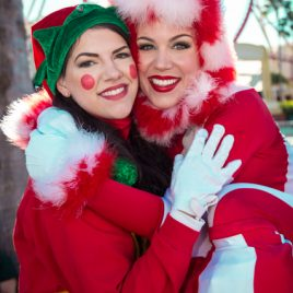 Santa's Elf And Candy Cane